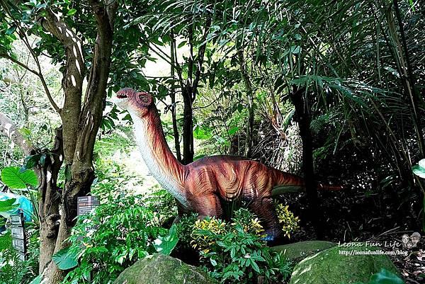 新北景點 大板根恐龍展 門票 探索森林 親子房 大板根森林溫泉酒店評價 住宿推薦 親子景點 親子一日遊 溫泉 森林 侏羅紀DSC07058.JPG