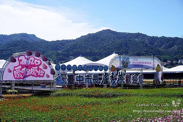 2020新社花海 台中國際花毯節-活動、交通資訊、住宿優惠,愛麗絲的花境探險&10米高紅心皇后2020愛你愛妳DSC05089.JPG