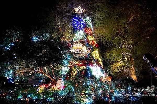 期間限定新北三峽落羽松耶誕樹-山林漫步、泡美人湯品海陸大餐,浪漫過聖誕親子景點約會景點1DSC06660.JPG