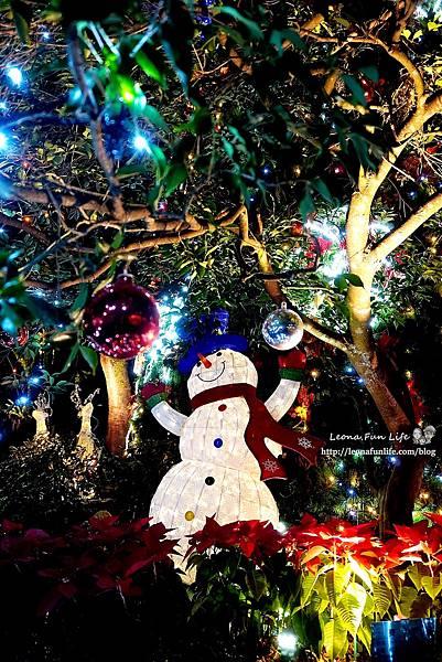 期間限定新北三峽落羽松耶誕樹-山林漫步、泡美人湯品海陸大餐,浪漫過聖誕親子景點約會景點1DSC06667.JPG