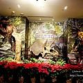 期間限定新北三峽落羽松耶誕樹-山林漫步、泡美人湯品海陸大餐,浪漫過聖誕親子景點約會景點1DSC06695.JPG
