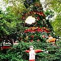 期間限定新北三峽落羽松耶誕樹-山林漫步、泡美人湯品海陸大餐,浪漫過聖誕親子景點約會景點1DSC06810.JPG