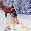 期間限定花蓮遠雄海洋公園-銀白飄雪聖誕季、歡樂遊行、雪屋玩雪,還有美人魚共舞喔!花蓮景點1DSC08627.JPG