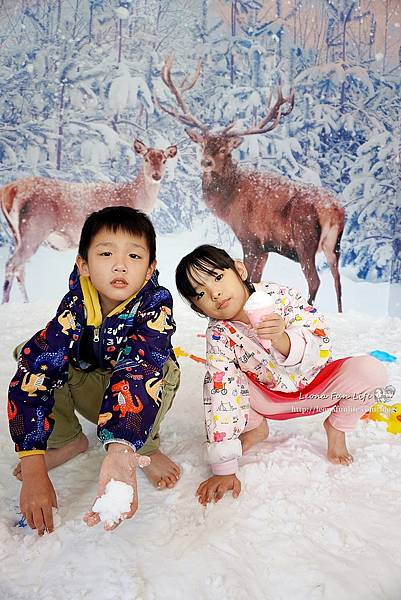 期間限定花蓮遠雄海洋公園-銀白飄雪聖誕季、歡樂遊行、雪屋玩雪,還有美人魚共舞喔!花蓮景點1DSC08625.JPG
