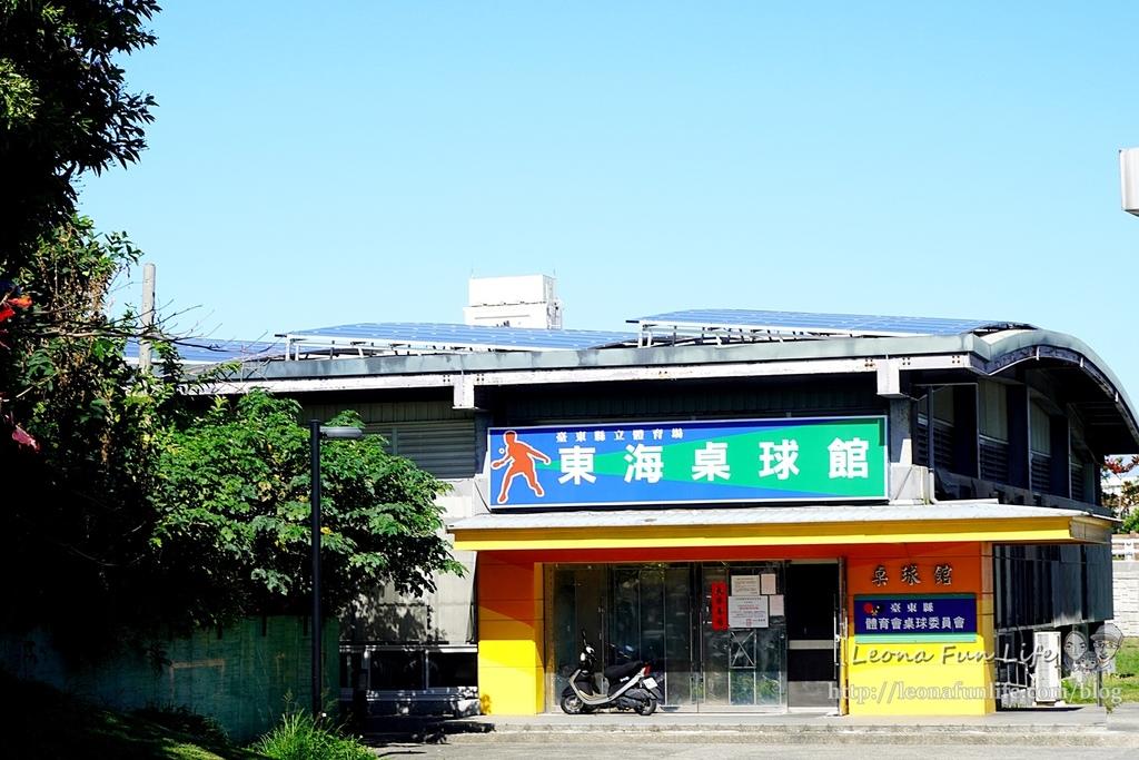 台東親子景點東海運動公園-太平溪旁享受陽光綠地的休閒好去處,還有桌球館、羽球館、籃球場喔!!免費景點DSC03896.JPG