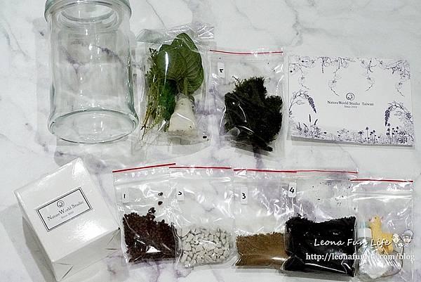 親子DIY體驗原生態工作室-植物生態瓶材料包手作DIY,免準備、零失誤,輕鬆打造療癒微景室內植栽擺件DSC02015.JPG