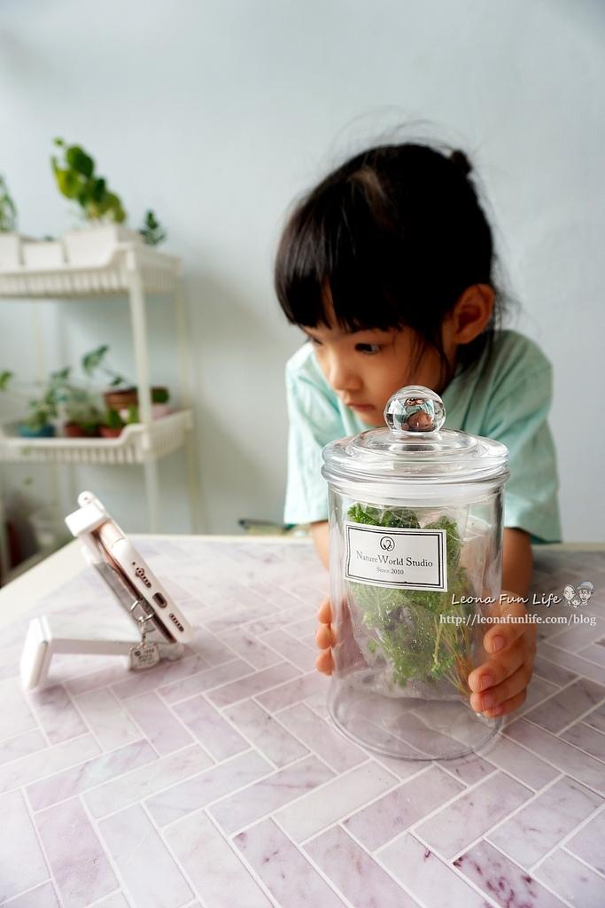 親子DIY體驗原生態工作室-植物生態瓶材料包手作DIY,免準備、零失誤,輕鬆打造療癒微景室內植栽擺件DSC02032.JPG