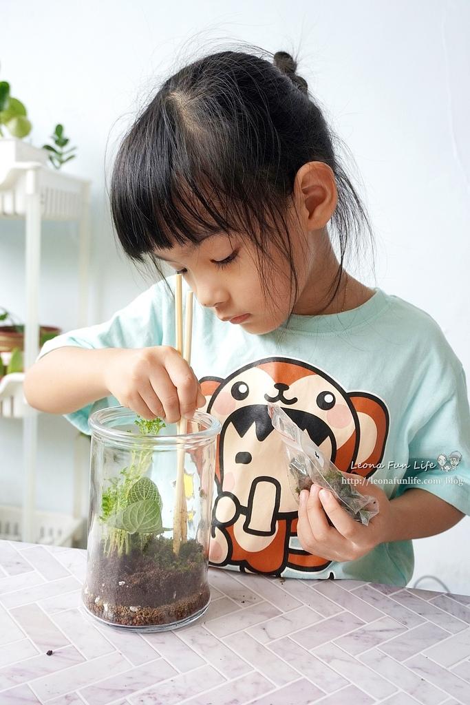 親子DIY體驗原生態工作室-植物生態瓶材料包手作DIY,免準備、零失誤,輕鬆打造療癒微景室內植栽擺件DSC02050.JPG