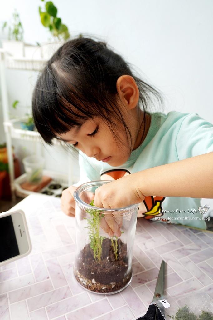 親子DIY體驗原生態工作室-植物生態瓶材料包手作DIY,免準備、零失誤,輕鬆打造療癒微景室內植栽擺件DSC02048.JPG