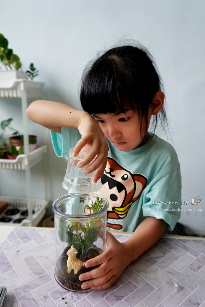 親子DIY體驗原生態工作室-植物生態瓶材料包手作DIY,免準備、零失誤,輕鬆打造療癒微景室內植栽擺件DSC02051.jpg