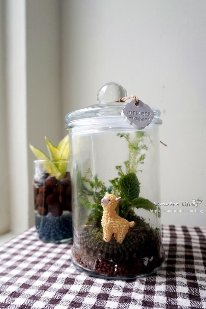 親子DIY體驗原生態工作室-植物生態瓶材料包手作DIY,免準備、零失誤,輕鬆打造療癒微景室內植栽擺件DSC02055.JPG
