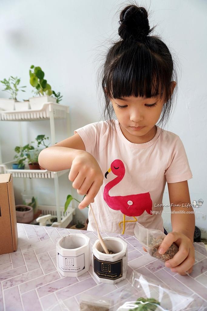 親子DIY體驗原生態工作室-下班隨手作 DIY 材料包,新手也能輕鬆入手美美的多肉植物室內植栽擺件DSC02116.JPG