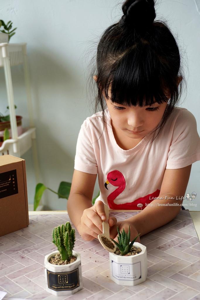 親子DIY體驗原生態工作室-下班隨手作 DIY 材料包,新手也能輕鬆入手美美的多肉植物室內植栽擺件DSC02119_副本.jpg