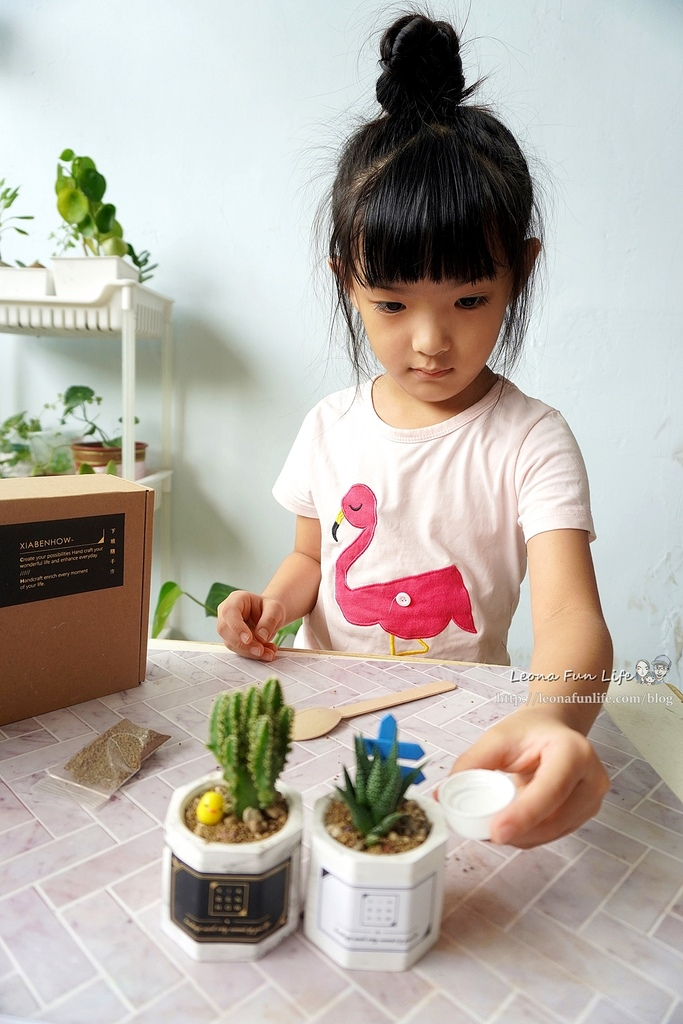 親子DIY體驗原生態工作室-下班隨手作 DIY 材料包,新手也能輕鬆入手美美的多肉植物室內植栽擺件DSC02121.JPG