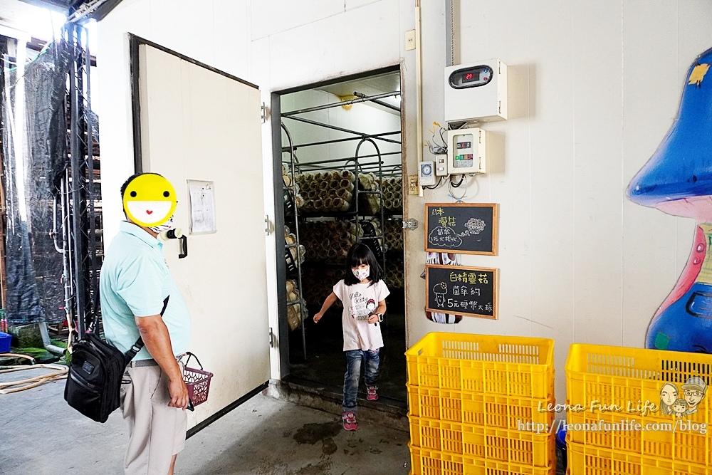 豐年靈芝菇類生態農場南投埔里親子景點推薦,走進菇菇樂園DIY菇菇披薩、採菇、踏青、爬木屑山DSC05122-2.jpg