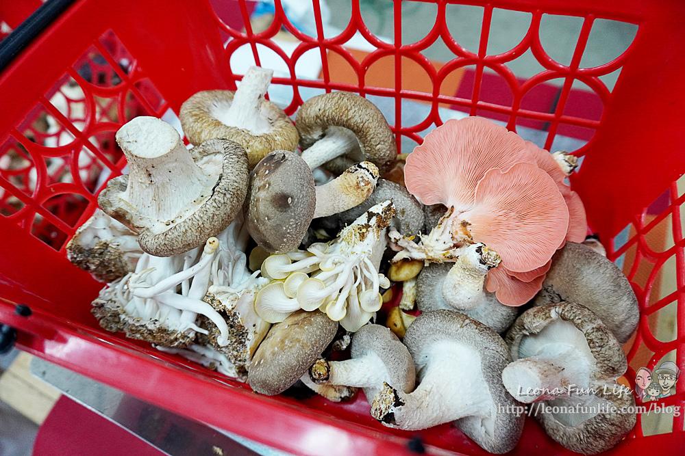 豐年靈芝菇類生態農場南投埔里親子景點推薦,走進菇菇樂園DIY菇菇披薩、採菇、踏青、爬木屑山DSC05134.jpg