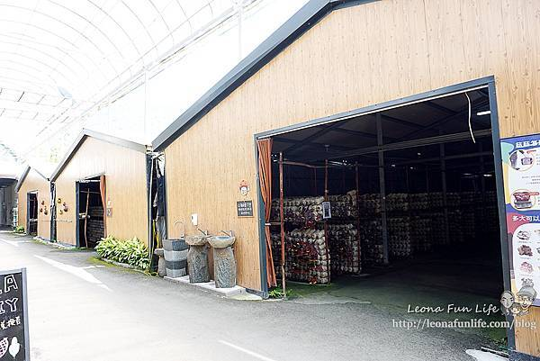 豐年靈芝菇類生態農場南投埔里親子景點推薦,走進菇菇樂園DIY菇菇披薩、採菇、踏青、爬木屑山DSC05148.jpg