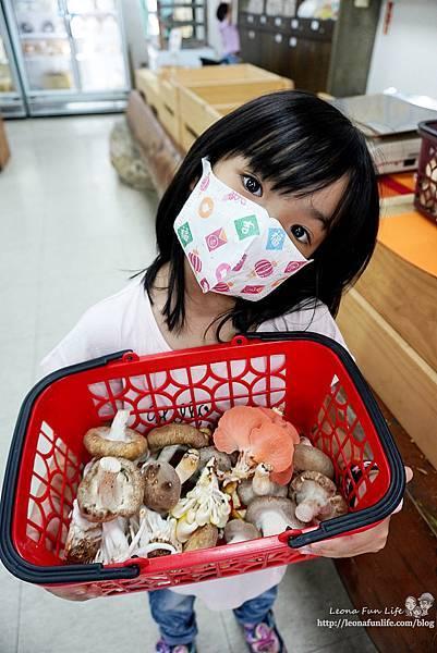 豐年靈芝菇類生態農場南投埔里親子景點推薦,走進菇菇樂園DIY菇菇披薩、採菇、踏青、爬木屑山DSC05135.jpg