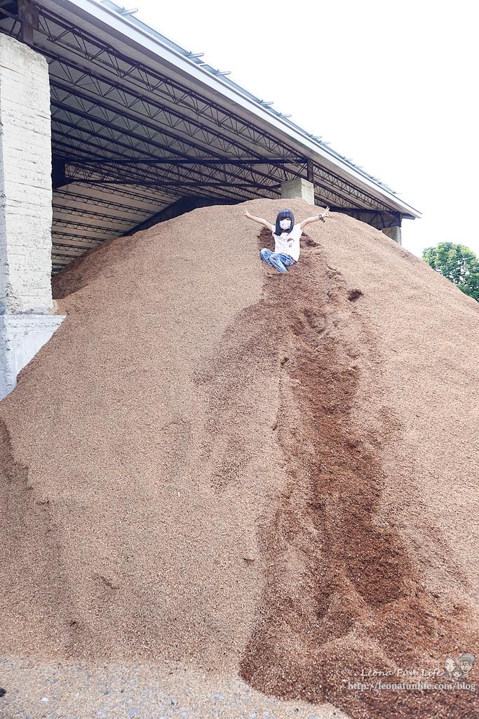 豐年靈芝菇類生態農場南投埔里親子景點推薦,走進菇菇樂園DIY菇菇披薩、採菇、踏青、爬木屑山DSC05171.jpg