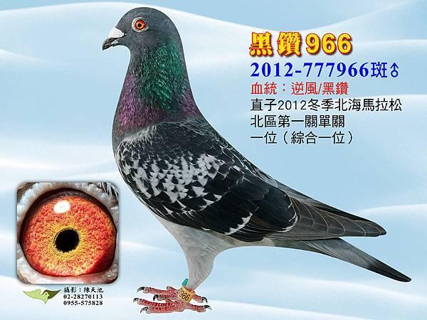 12-777966-01.jpg