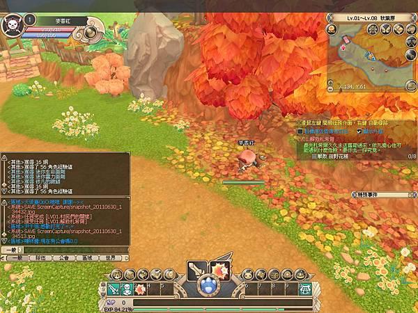 snapshot_20110630_134531.jpg