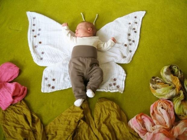 butterfly-thumb.jpg
