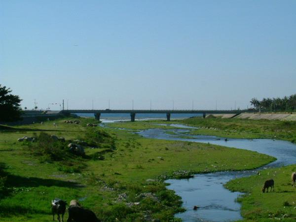 太平溪出海口.JPG
