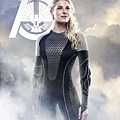 hunger-games-catching-fire-quarter-quell-posters-11.jpg