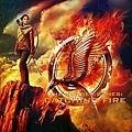 the_hunger_games_catching_fire_hd_wallpaper-normal.jpg