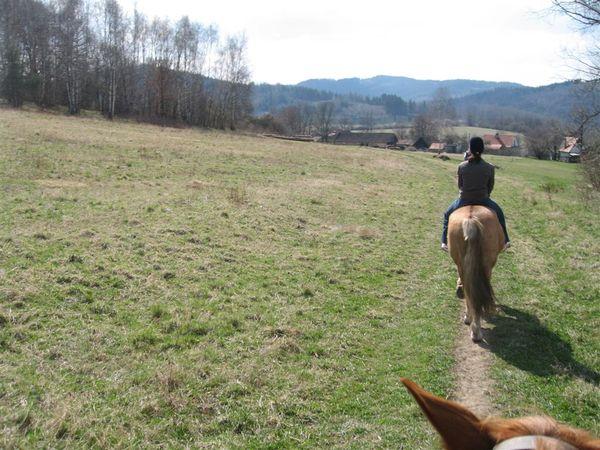 CK騎馬3.JPG