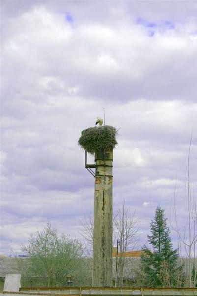 Hluboka孤鳥.JPG