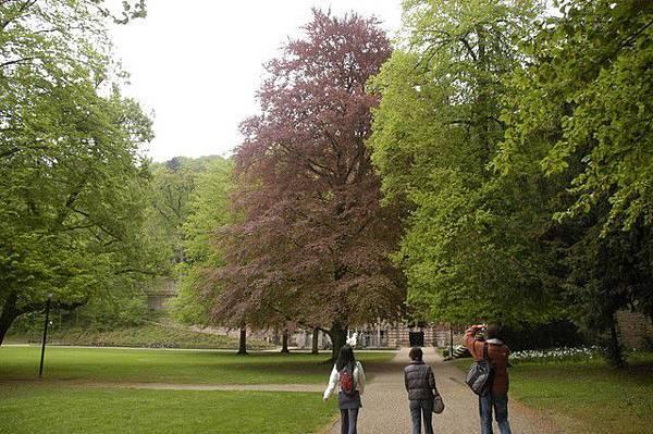 海德堡的庭園