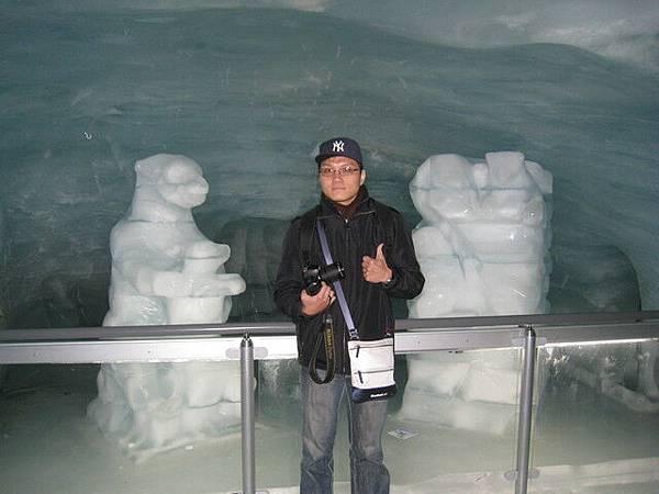 各式各樣的冰雕