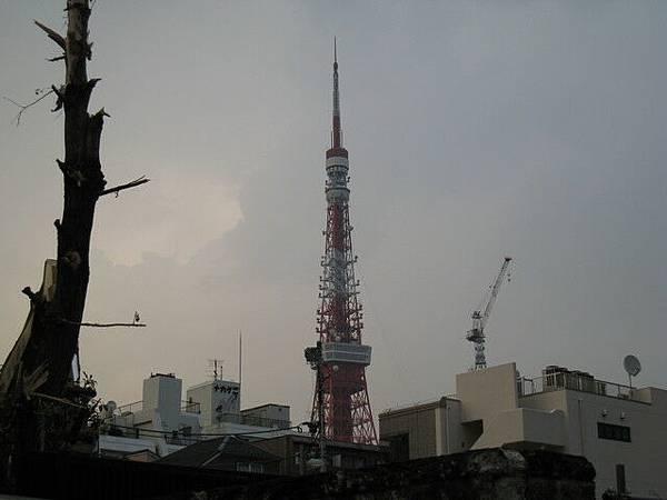 遙望東京鐵塔