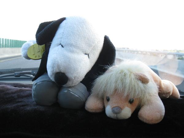 還有Snoopy和小獅