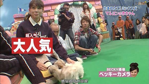 【ZOO】[HD] 20150124 天才!志村どうぶつ園.mkv_000684971.jpg