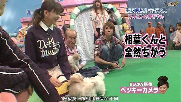 【ZOO】[HD] 20150124 天才!志村どうぶつ園.mkv_000686711.jpg