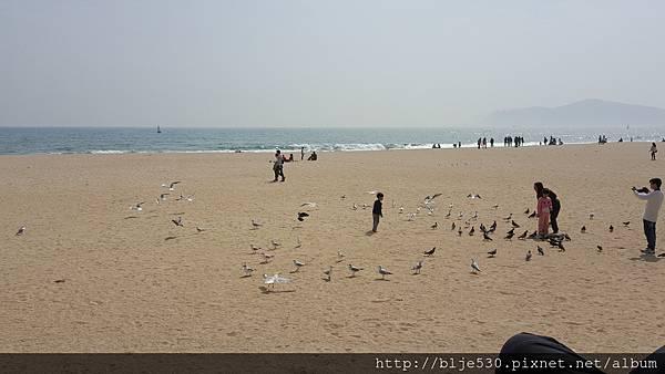 海云台沙灘