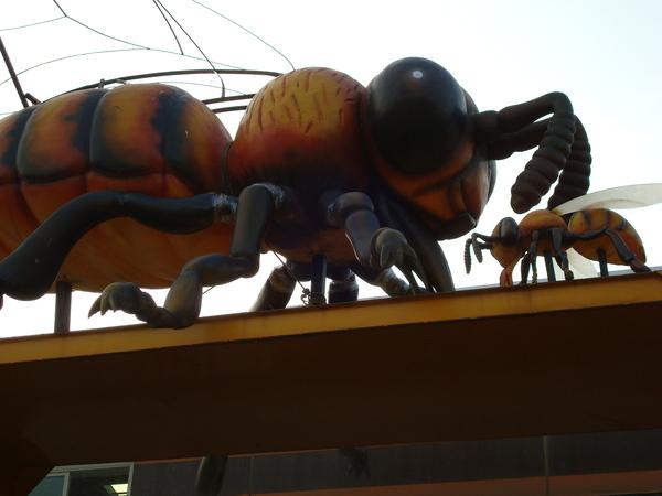 屋頂上的超大蜜蜂
