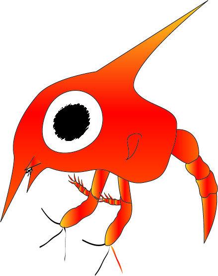 螃蟹幼生.jpg