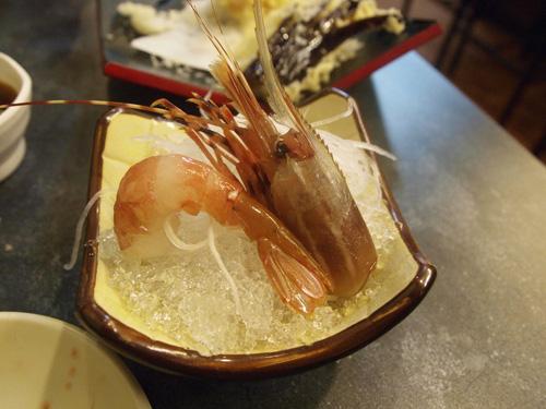 牡丹蝦_1092559.jpg