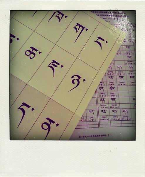 我的藏文課