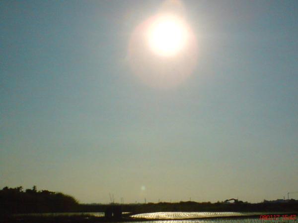 那天下午的太陽