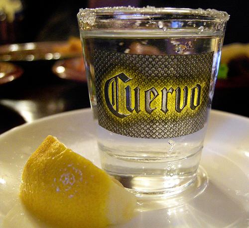 純龍舌蘭用杯