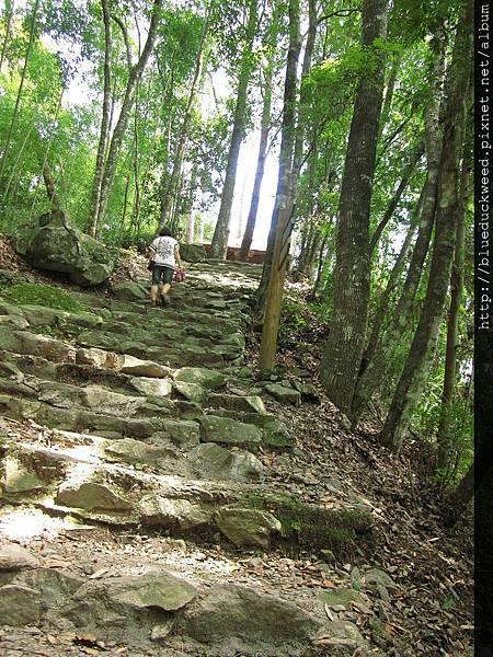 往神社遺址方向的小坡