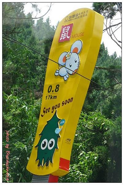 12生肖彎道-鼠