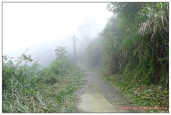 薄霧籠罩的爬坡路