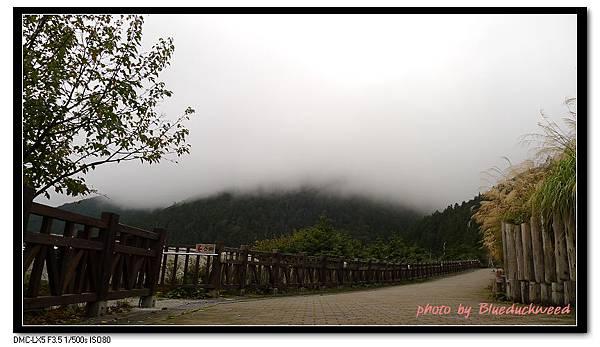 雲霧繚繞好冷又好美