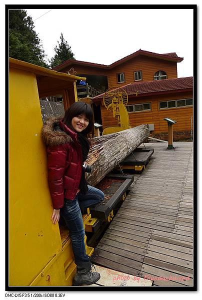供遊客拍照載運木材的火車頭