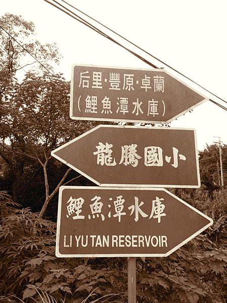 在台灣旅遊指示牌真的很重要